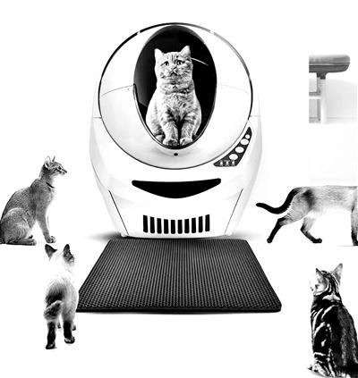 """宠物迈进""""智能家居时代"""""""