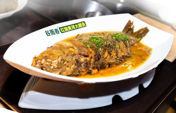 舌尖上的河南:百人餐饮团到郑州考察品牌餐企 黄河大鲤鱼被集体点赞