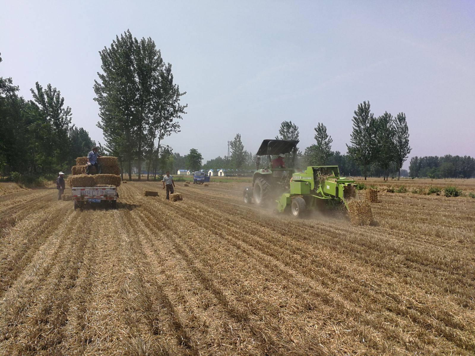 豫东牧业推广小麦秸秆捡拾打捆机实现经济与环保双赢