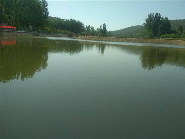 内乡县岞曲镇:湿地修复项目带给脱贫攻坚的生态张力