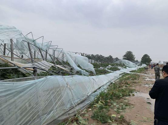 兰考遭遇暴风雨灾害 中原农险开辟快速理赔绿色通道