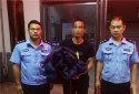 邓州:刘集派出所快速破获电动三轮车被盗案