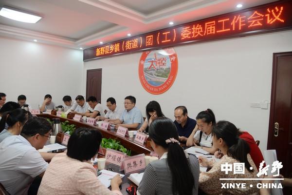 新野县召开乡镇(街道)团(工)委换届工作会议
