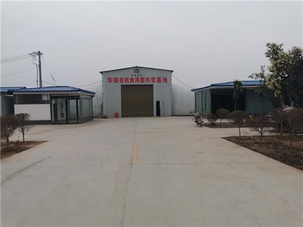 罗古洞乡村振兴引领产业兴旺 大许寨六村共建力促产业富民