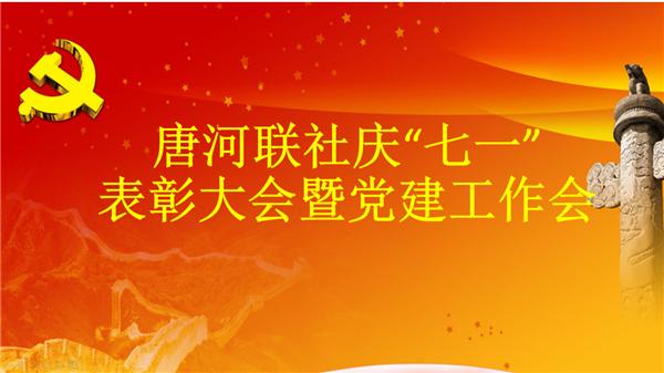 """唐河联社召开庆""""七一""""表彰大会暨党建工作会议"""