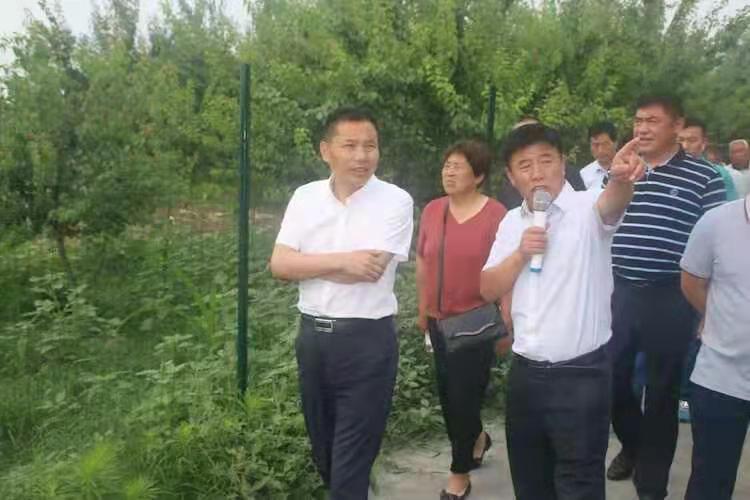 永城太丘镇:观摩学习取真经,助推乡村大振兴