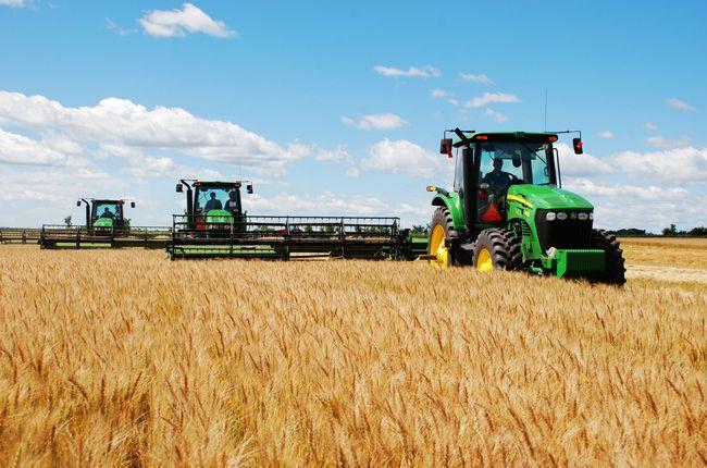 河南夏粮总产量749.08亿斤 居全国第一