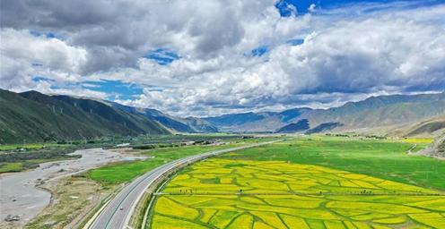 绿意盎然!西藏拉林公路夏日美