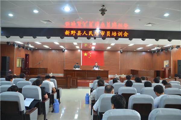 新野法院举行人民陪审员任职培训暨宣誓仪式