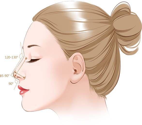 泰美维纳斯整形:安至、精至、美至,精准数据告诉您什么才是美鼻
