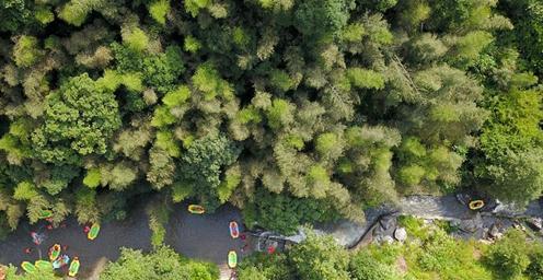 江西石城:野趣横生 山林深处享清凉