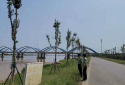 """郑州市兴达路街道为黄河防汛工作上牢""""双保险"""""""