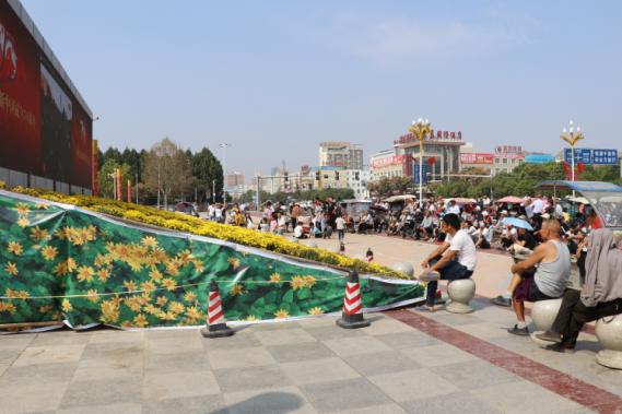 升国旗观看阅兵式!太康县干部群众庆祝新中国成立70周年