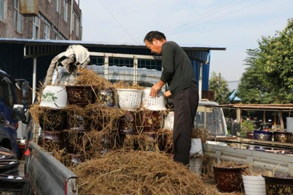 郏县:陶瓷产业园区产销两旺