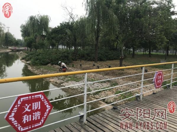 安阳县公益广告养眼 文明之风劲吹