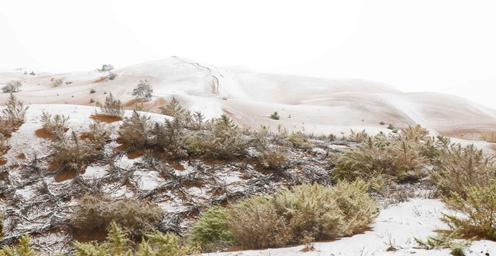 大漠沙覆雪:宁夏沙波头迎来一场降雪