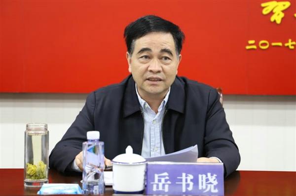 内乡县人大常委会副主任岳书晓一行视察县公安局经济犯罪侦查工作