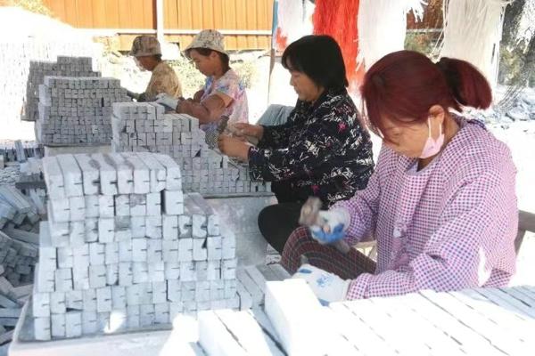 """南召县""""两业""""奖励增强贫困群众""""造血功能"""""""