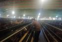 唐河县上屯镇:小鸡场推动大扶贫