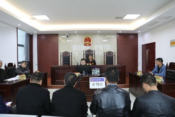 内乡法院邀请人大代表、政协委员旁听庭审