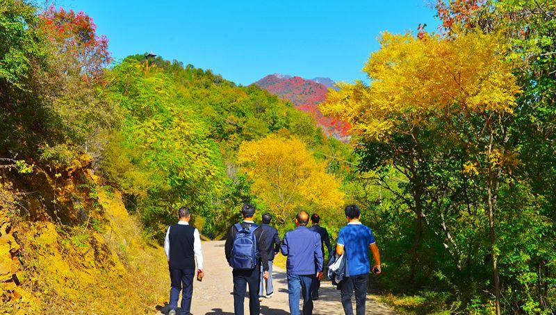 穿林区、览景观、识人文 济源开放我国首个森林步道