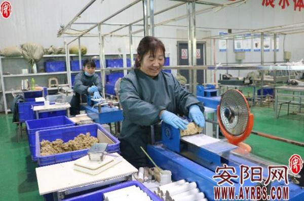 汤阴县小艾草叫响海外大市场