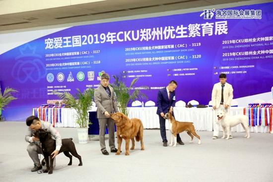 郑州国际宠物产业博览会隆重开幕 多家名企齐聚郑州各展精彩