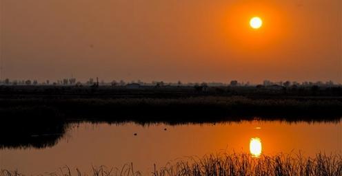 哈素海湿地一派静谧与祥和