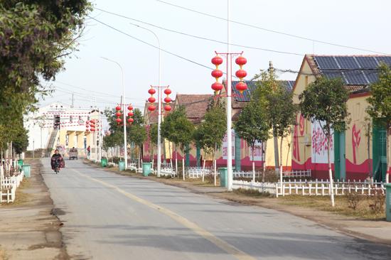 旧村焕新颜:永城市苗桥镇用产业振兴带动乡村振兴