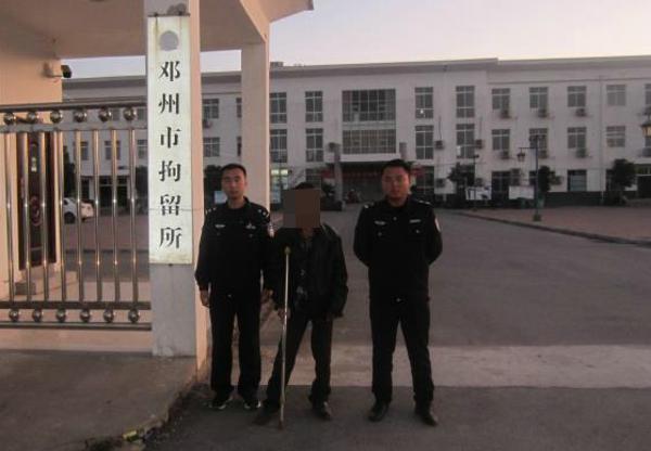 邓州张楼:一男子盗窃城市绿化景观树当场被抓