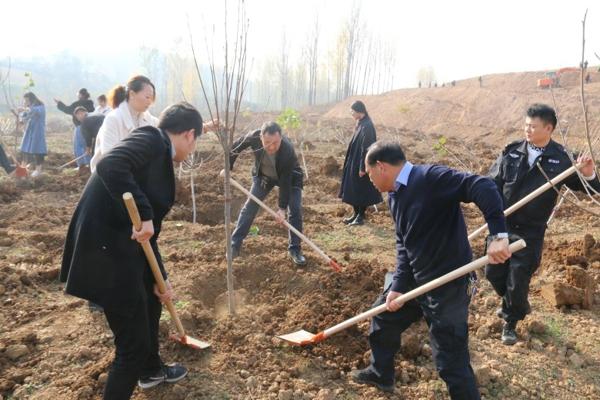 南召法院组织干警参加冬季义务植树活动