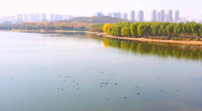 航拍:郑州北龙湖秋色如画