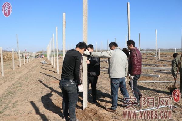 内黄县产业扶贫基地播撒致富新希望