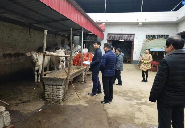 社旗县长张荣印深入基层督导脱贫摘帽问题整改工作