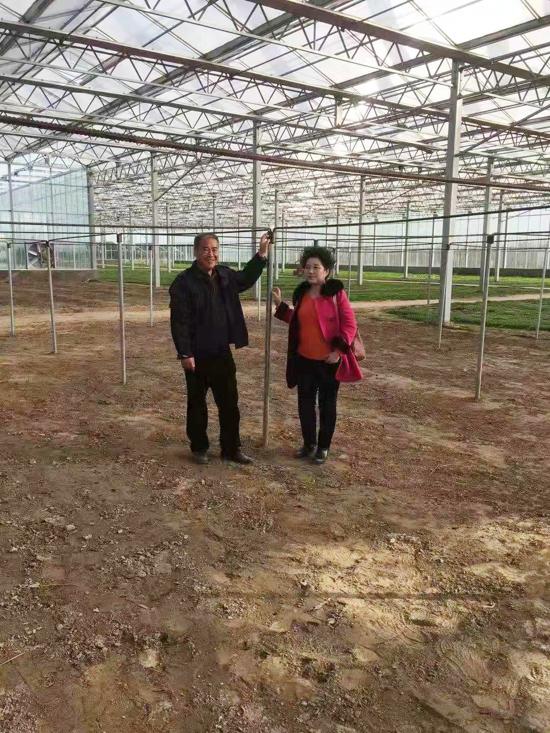 九三学社河南省科学院委员会生物所支社程雁主委指导食用菌生产工作