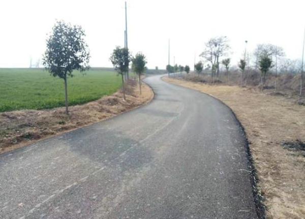 新修道路12.4公里 郏县李口镇:连心路修到群众心坎上