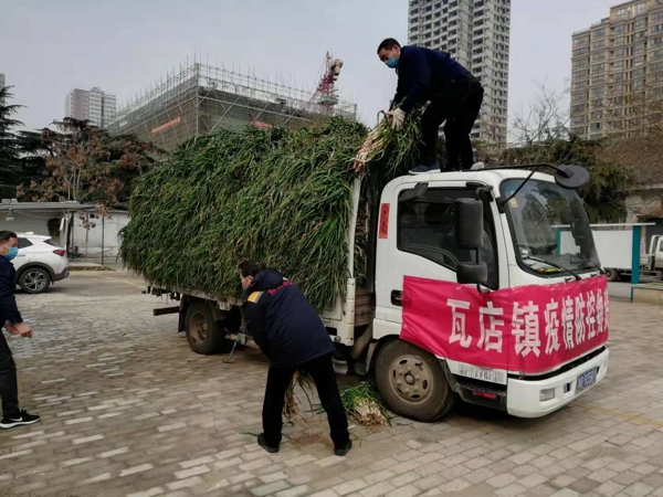 暖心!宛城区这位党员将10吨蔬菜捐给一线医护人员!