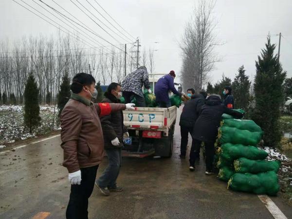 新野县五星镇:风雪中,万斤蔬菜助防控