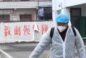 郑州港区一干部违规聚众饮酒、殴打小区执勤人员被双开并拘留