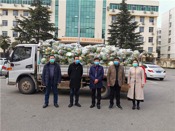 宛城区人大代表屠建向仲景街道捐赠6千斤蔬菜助力疫情防控
