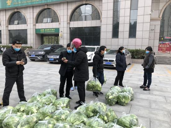 扶贫基地蔬菜滞销,邮储银行南阳市分行爱心助农