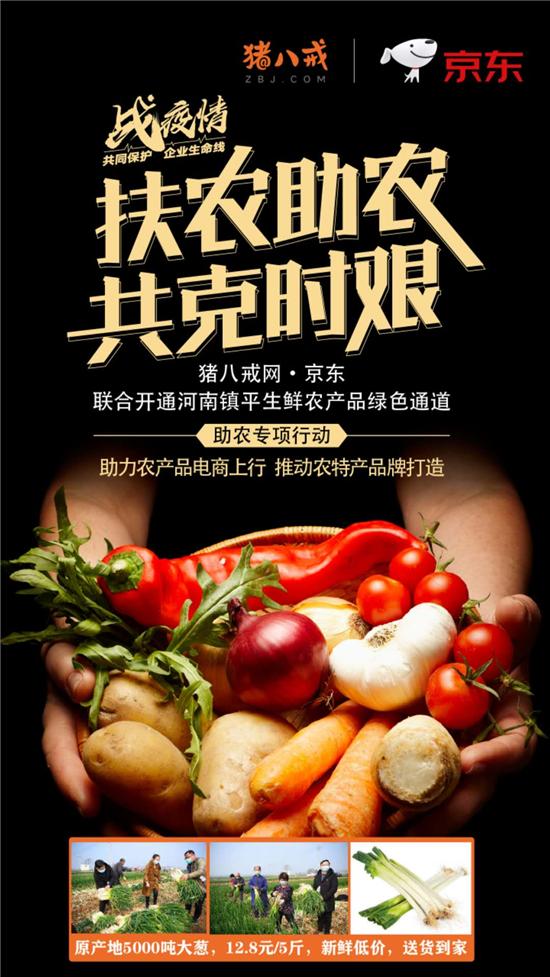 扶农助农 共克时艰!河南镇平县联合猪八戒网解决农产品销售的困境