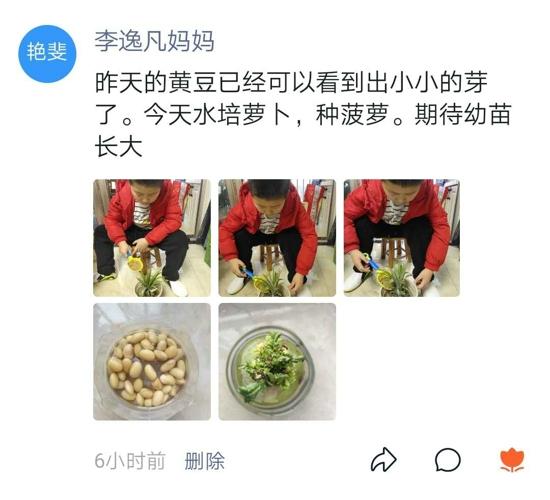 我陪植物一起成长——郑州管城区南关小学开展亲子创意种植活动