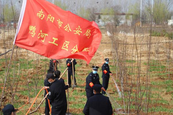 南阳鸭河工区分局开展义务植树活动
