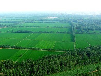 国务院改革土地管理制度