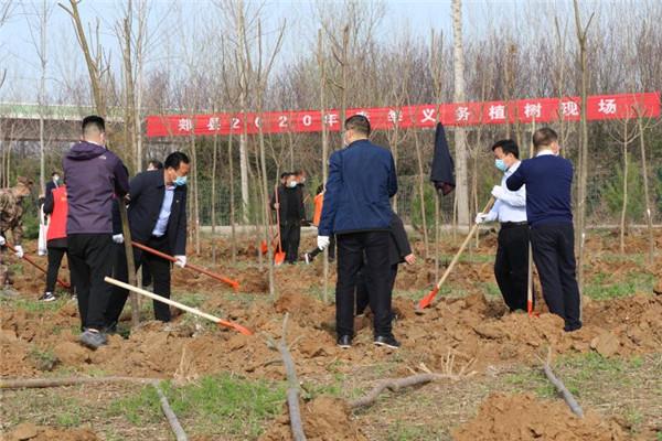 郏县完成春季植树造林4.15万亩