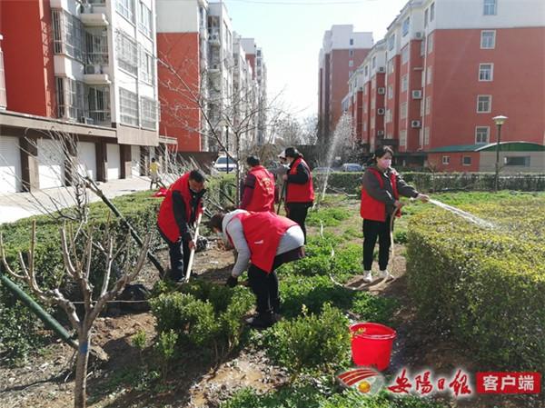 林州市振林街道:春风和煦植树忙 美化家园添新绿