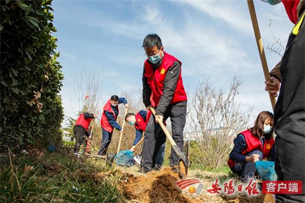滑县:春来播新绿 繁花竞盛开