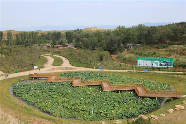 南召县:整治人居环境 建设富美乡村