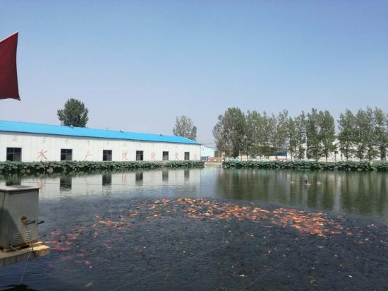 助推精准脱贫!河南新乡卫滨区发展农业高新技术产业